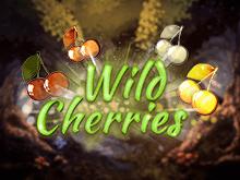 Игровой автомат Wild Cherries